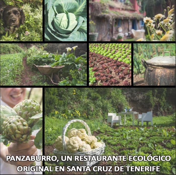 RESTAURANTES DE ALIMENTOS NATURALES EN SANTA CRUZ DE TENERIFE